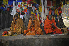 lucknow buddhist singles Lucknow: what could be termed as a major step forward to promote buddhist tourism in uttar pradesh, the district administration of kushinagar entered into an.